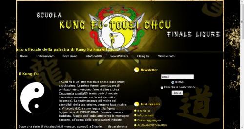 Skin kung fu.jpg